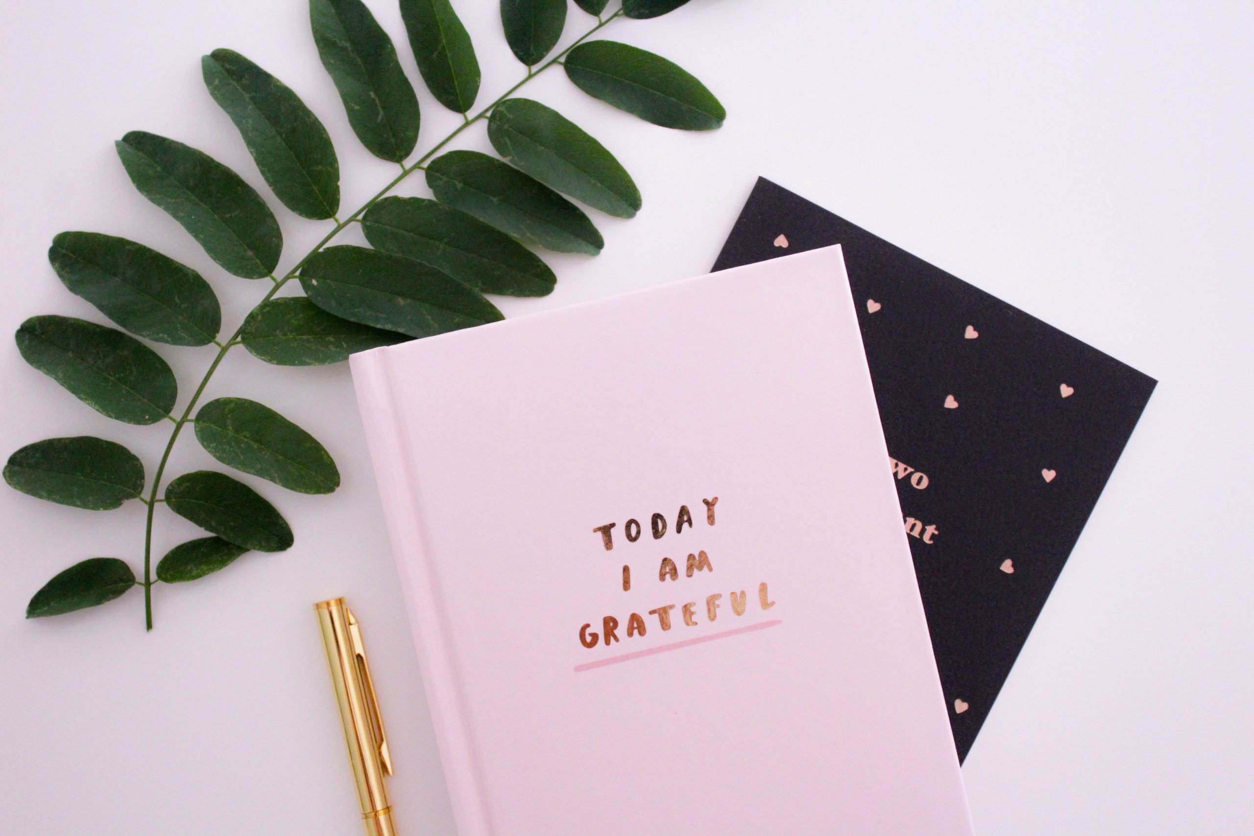 Practice Gratitude - Blog Post